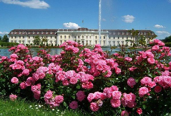 Roses Designs Buildings Common Architecture Founta