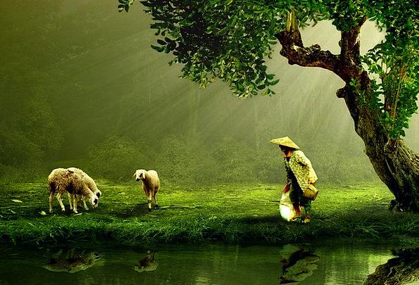 Women Females Landscapes Ancient Nature Shepherd M