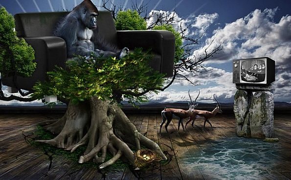 Consumer Society Landscapes Nature Lazy Indolent W