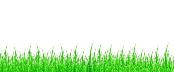 Background Contextual Textures Lawn Backgrounds Na