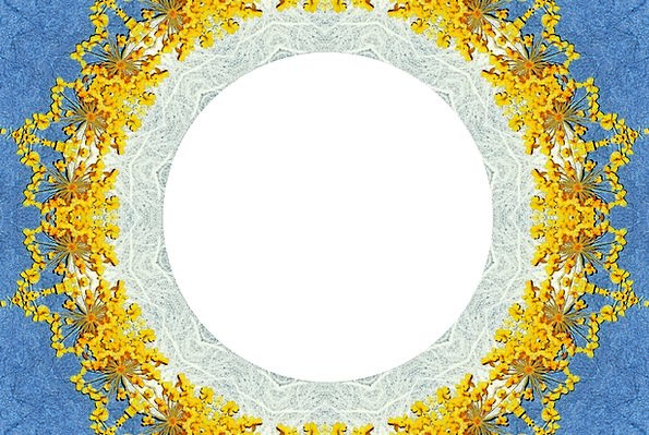 Frame Edge Flowery Flowers Plants Floral Yellow Cr