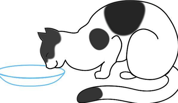 Cat Feline Eating Milk Exploit Drinking Free Vecto