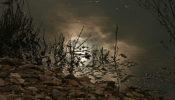 River Stream Aquatic Moon Romanticize Water Night