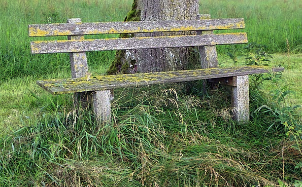 klupa nekoga čeka - Page 4 Bank-Set-Landscapes-Nature-Wood-Bench-Free-Image-O-0701