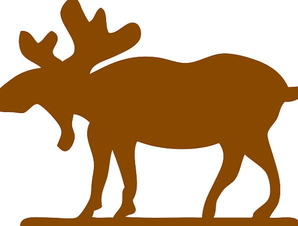 Moose Landscapes Outline Nature Huge Enormous Silh