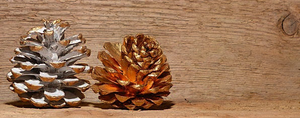 Pine Cones Textures Gilded Backgrounds Wood Timber