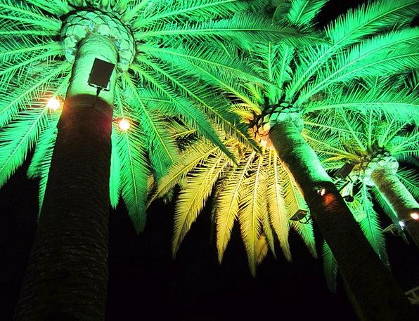 Green Light Go-ahead Illumination Light Electric L