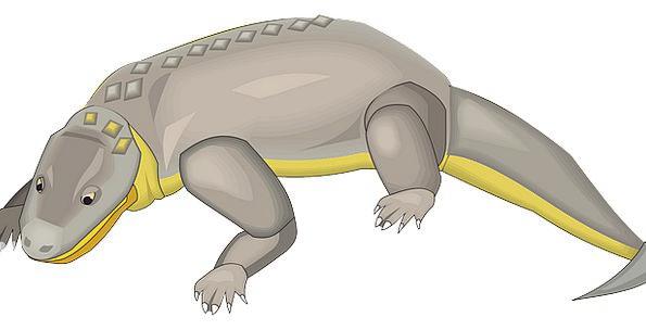 Alligator Line Creature Being Crocodile Aggressive