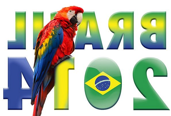 World Cup Imitator Football Ball Parrot Brazil Wor