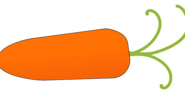 Carrot Incentive Drink Plant Food Food Nourishment