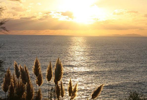 Sun Vacation Sundown Travel Feather Duster Sunset