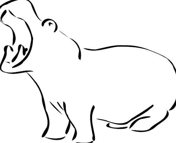Hippo Landscapes Nature Wildlife Hippopotamus Crea