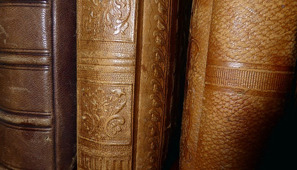 Spine Back Records Antiquariat Books Old Ancient O