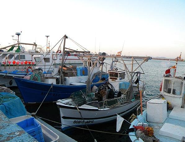 Boats Ships Angling Girona Fishing Port Harbor Ros
