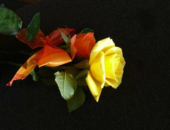 Rose Design Landscapes Ring Nature Flower Floret L