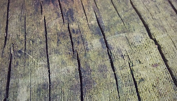 Wood Timber Textures Backgrounds Old Ancient Woode
