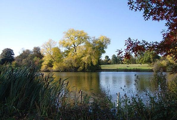 Lake Freshwater Calmness Serenity Blue Sky Trees P