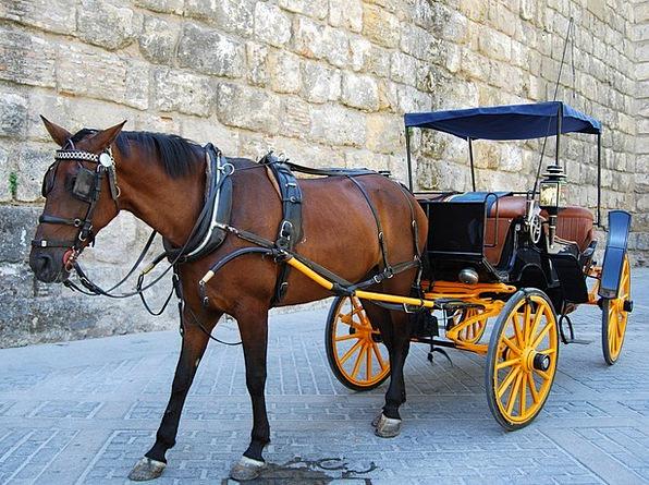Horse Mount Helms Romantic Idealistic Wheels Calas
