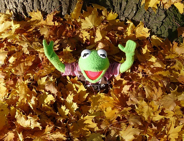 Kermit Lime Frog Green Autumn Leaf Piles Doll Chee