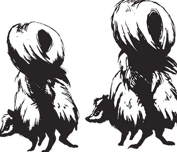Skunks Brutes Faunae Back Spinal Animals Free Vect