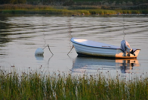 Powerboat Motorboat Boot Gumboot Fishing Boat Sea