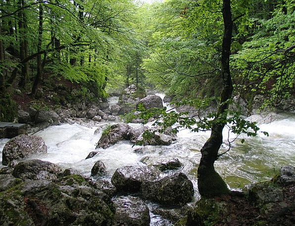 White Water Landscapes Stream Nature Bach River Ra