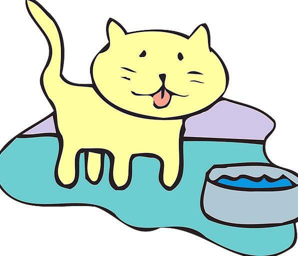 Cat Feline Aquatic Bowl Ball Water Pet Domesticate