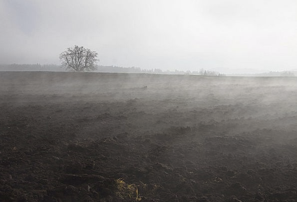Fog Mist Landscapes Disposition Nature Landscape S