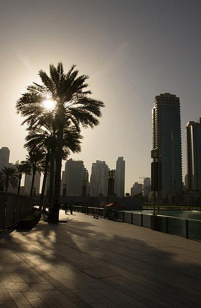Dubai Vacation Tribute Travel Evening Sky Palm Set