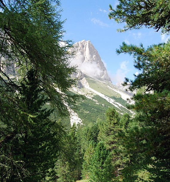 Dolomites Plants Mountains Crags Trees Branch Divi