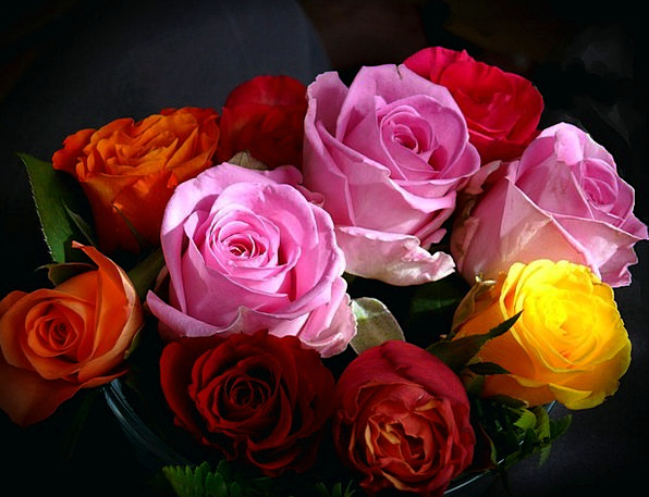 Roses Designs Interesting Bouquet Bunch Colorful Beautiful