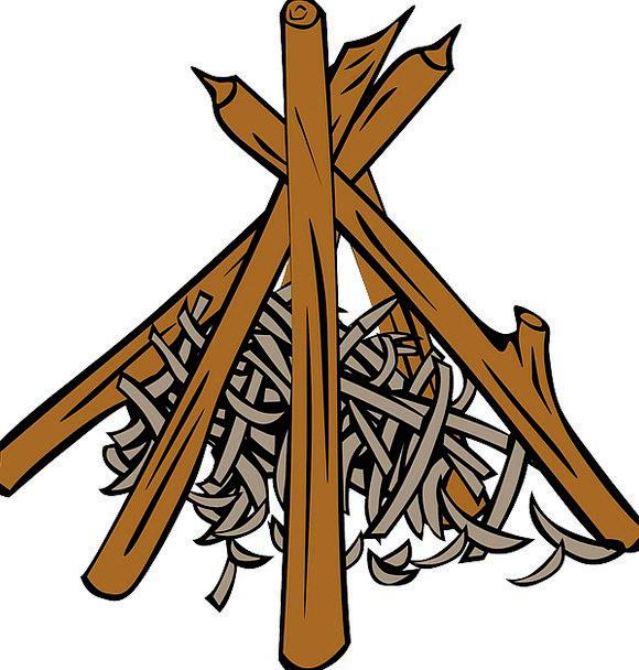 Logs Woods Shavings Splinters Campfire Wood Timber