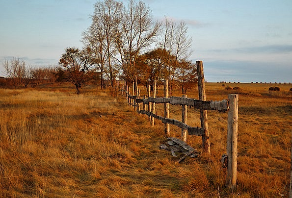 Fence Barrier Landscapes Timber Nature Autumn Fall