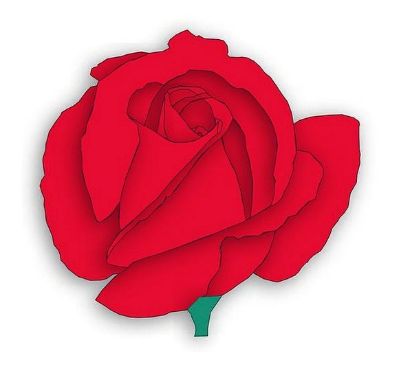 Red Rose Landscapes Design Nature Red Bloodshot Ro