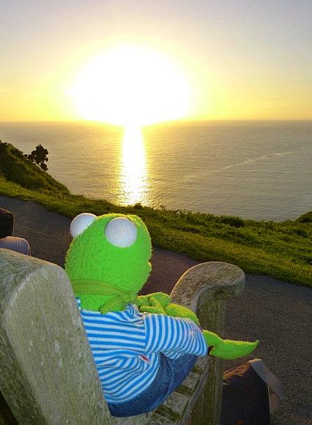 Kermit Vacation Travel Sunset Sundown Frog To Watc