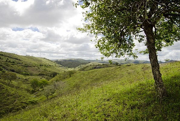 Nature Countryside Landscapes Plants Nature Landsc