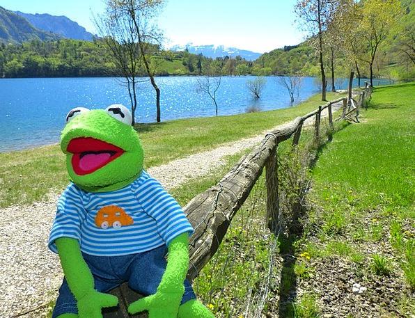 Tenno Lake Landscapes Nature Frog Kermit Nature La