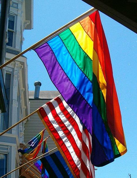 Rainbow Multicolored Standard Gay Flag Symbol Frie
