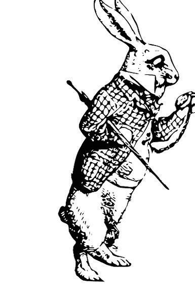 Rabbit Physical Bunny Animal Cartoon Animation Har