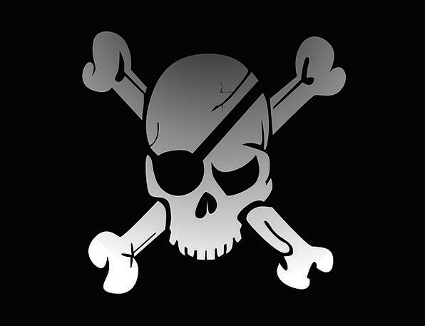 Skull Mind Pirate Buccaneer Crossbones Jolly Flag