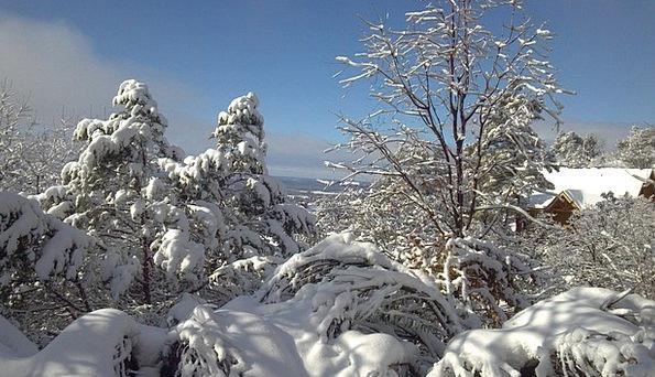 Snowscape Season Winter Magic Winter Winter Dream