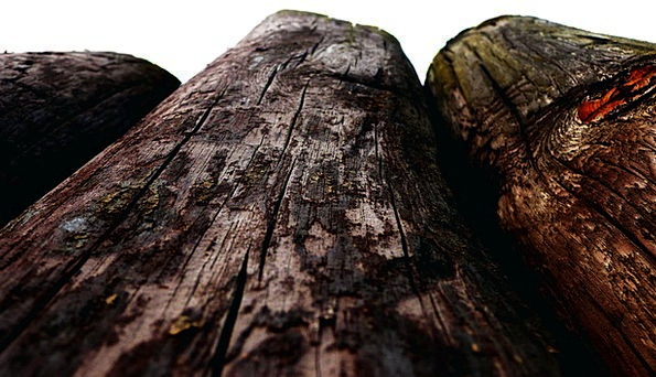 Wood Timber Textures Backgrounds Old Ancient Posts