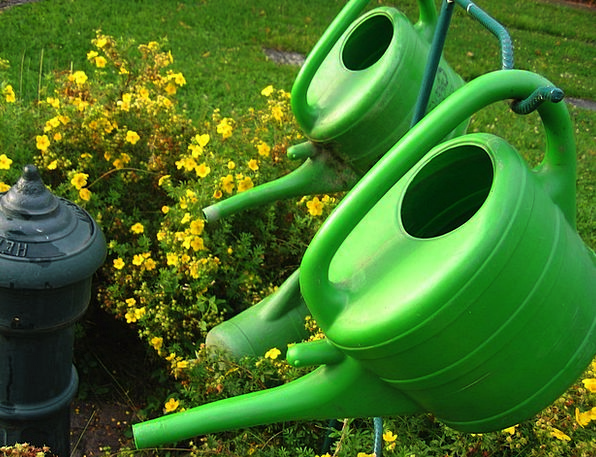 Watering Can Landscapes Attitude Nature Cemetery G