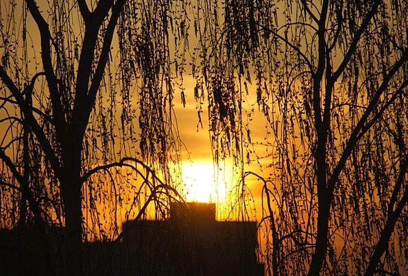 Evening Twilight Vacation Sundown Travel Sky Blue
