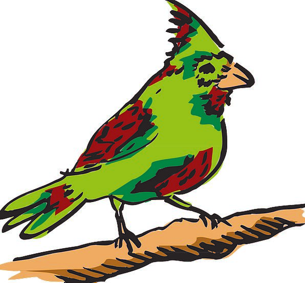 Red Bloodshot Lime Bird Fowl Green Feathers Downs
