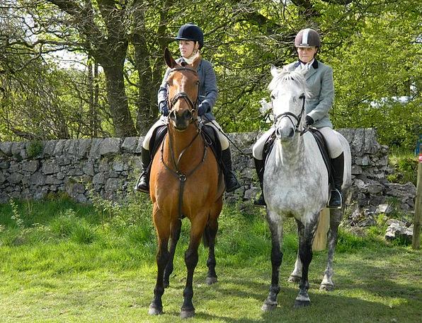 Horse Mount Proviso Ride Trip Rider Women Females