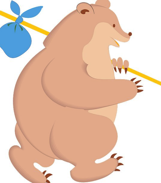 Bear Tolerate Vacation Travel Travel Portable Walk