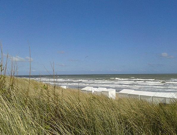 Dunes Banks Landscapes Bank Nature Sea Marine Dune