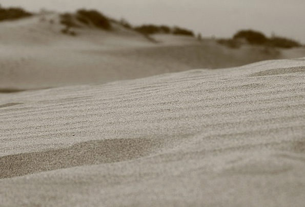 Sand Shingle Landscapes Reward Nature Dune Bank De