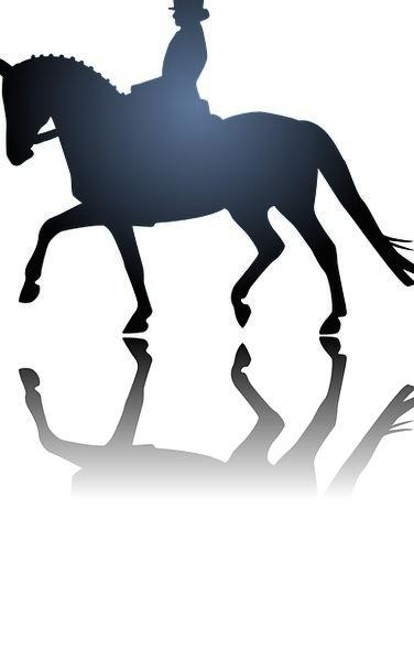 Sport Diversion Horse Mount Horseback Riding Dress